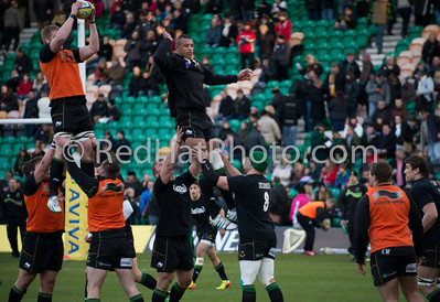 Northampton Saints vs Newcastle Falcons, Aviva Premiership, Franklin's Gardens, 23 November 2013